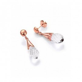 Earrings Viceroy Woman 6328E19017